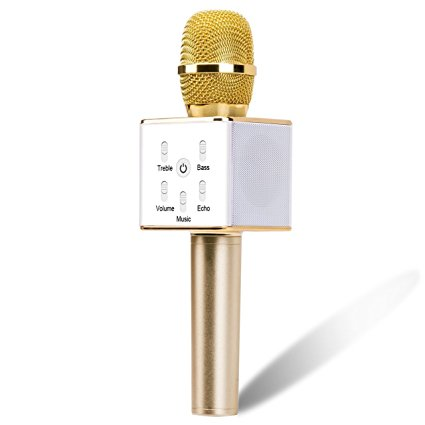 Create A Karaoke Party Powerhouse at Home with Your Stereo System golden mic