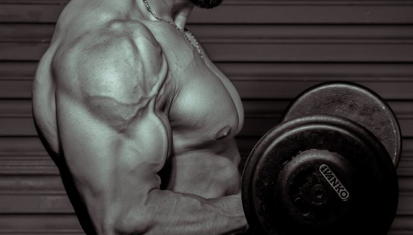Ways You Can Build Muscle Mass Fast