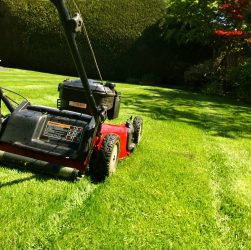 Lawncare 101: How To Choose A Lawn Mower For Your Type Of Yard