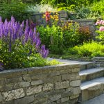 Smart Landscaping: Tips to Create a Functional and Beautiful Home Landscape Design
