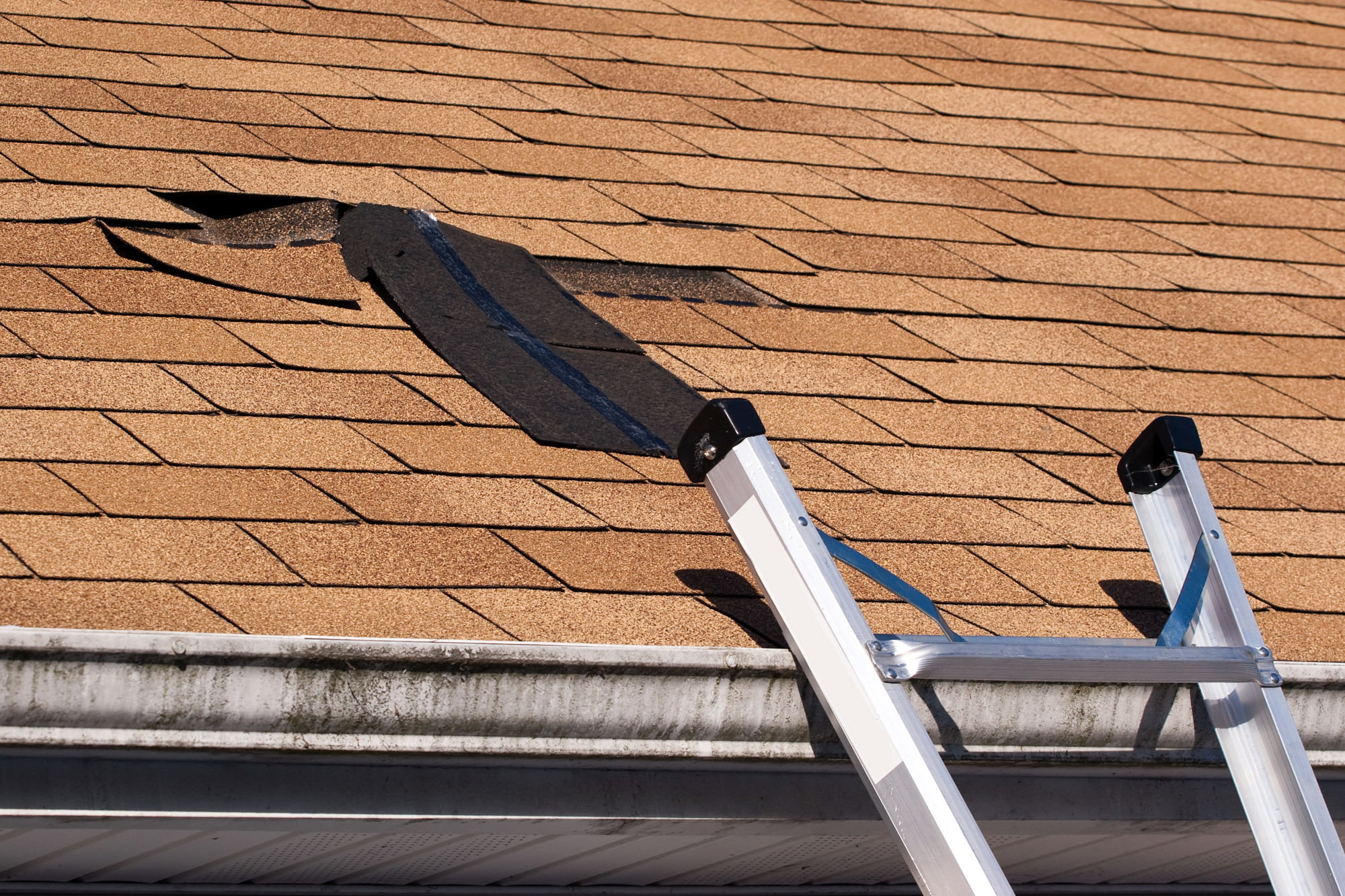 7 Terrible Signs Of A Bad Roof From The Pros