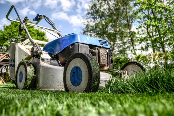 Looking for Someone to Do Yard Work: How to Decide Whether to Hire or DIY