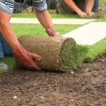 Sodding 101: Advantages of Installing a Sod Lawn