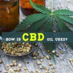 How Is CBD Oil Used?