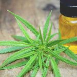 THE LEGALITY OF KW CBD OIL IN VARIOUS COUNTRIES
