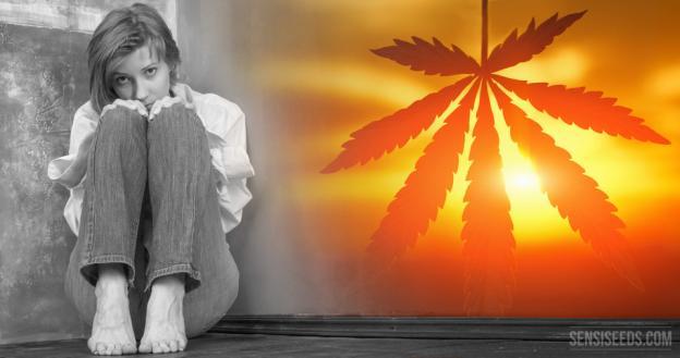 Marijuana Alleviates Stress, Social Anxiety and Depression