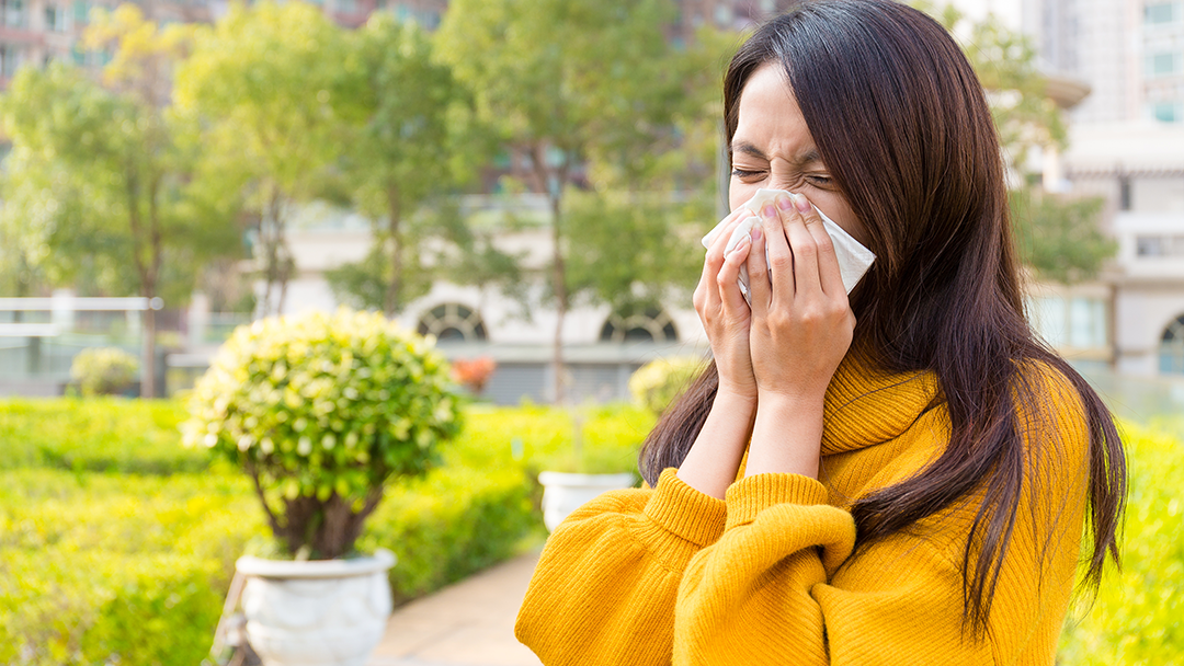 seasonal allergies treatment