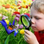 4 Activities to Help Spark a Love for Nature in Your Kids