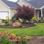A Thorough Guide for The Proper Maintenance of Your Yard