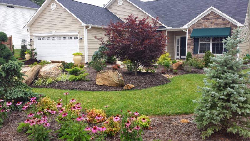 house yard maintenance
