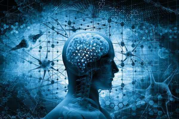 CBD Damage The Brain